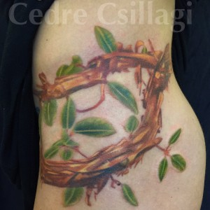 Madrone tattoo color botanical realism