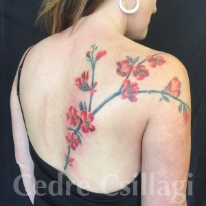 quince tattoo botanical