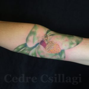 magnolia color tattoo abstract bee flower