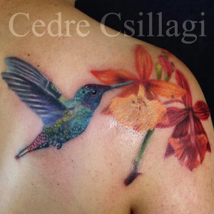 hummingbird botanical color tattoo