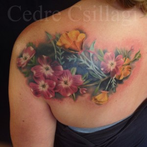 coverup color botanical flowers poppy background