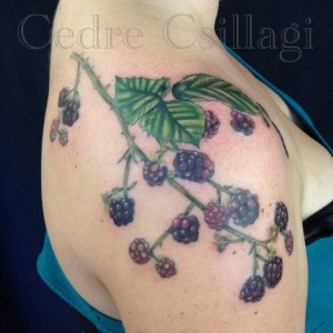 Color Tattoo Blackberries leaves vines